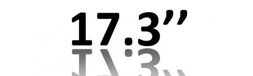 17.3'